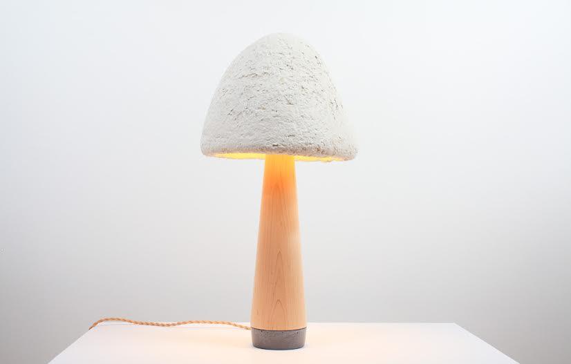 Grow surfboard from mushrooms mushroom lamp shade aloadofball Images