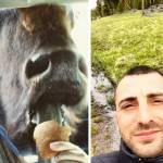 Bison Selfies