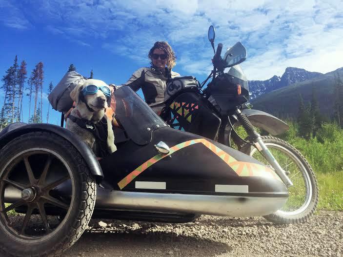 dog as copilot motorcycle road trip to alaska gearjunkie. Black Bedroom Furniture Sets. Home Design Ideas